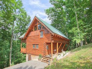 Bear Extraordinaire #28 - Sevierville vacation rentals