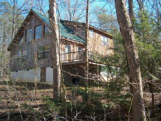 Hummingbird Cove - Sevierville vacation rentals