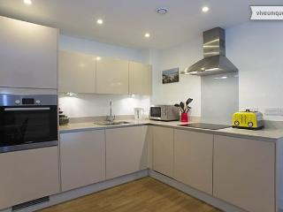 2 bed modern City apartment, Mildmay Ave, Islington - London vacation rentals