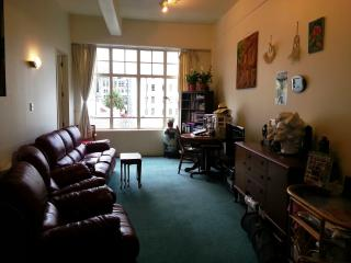 Double bedroom in the middle of Auckland CBD - Auckland vacation rentals