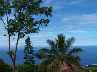 Hawaii Big Island Rental - Ocean View vacation rentals