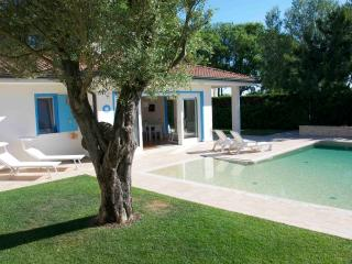 Villa with swimming pool in an exclusive private island close to Venice - Cona vacation rentals