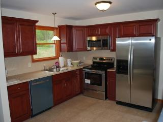 Pocono House with Amenities, close to everything - Long Pond vacation rentals