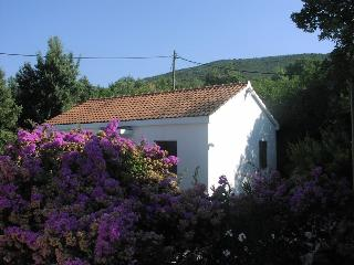 Lovely house near Dubrovnik - Gruda vacation rentals