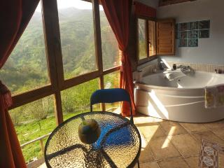 Jacuzzi in the mountains with views and fireplace - Proaza vacation rentals