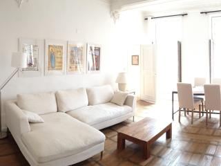 Spacious apartment Pat&Co, sleeps 4, town centre - Beaune vacation rentals