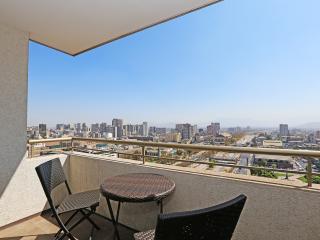 Apartamento Parque Forestal 2 Santiago Centro - Santiago vacation rentals