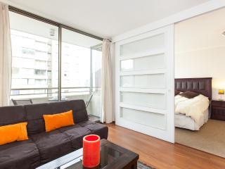 Apartamento Parque Forestal 4 Santiago Centro - Santiago vacation rentals