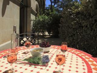 Secret Garden 1 - Sunny pool, shady garden, walk t - Pezenas vacation rentals