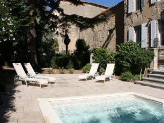 Manoir Theron - Huge family friendly maor house wi - Pepieux vacation rentals