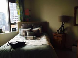 Luxury 1 Bed Fully Furnished in the heart of LOOP - Chicago vacation rentals