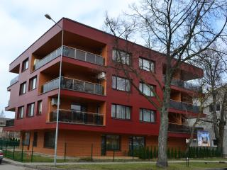 3 rooms bright apartment - Palanga vacation rentals