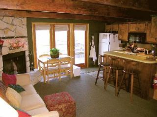 Adorable Cozy Cabin In Big Bear - Big Bear City vacation rentals