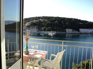 Apartment with a Great Sea View! - Jelsa vacation rentals
