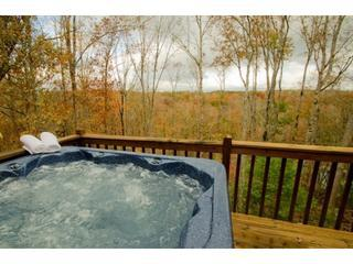 What a beautiful view from the hot tub during the fall at La Maison - La Maison D'eleonore * Coosawattee Resort* Bargain - Ellijay - rentals