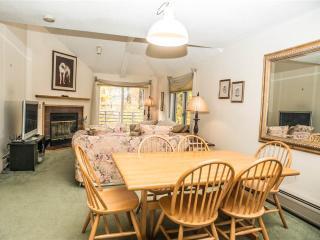 The Woods Resort & Spa-WV30 - Killington Area vacation rentals
