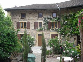 Fab Farmhouse with grand piano- Haut Beaujolais/Burgundy border - Macon vacation rentals
