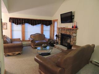 Ski Camelback 4 Bedrooms/3 Full Baths/Free Wifi - Tannersville vacation rentals
