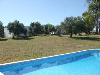 Cute bungalow in Arcos de la Frontera with air-conditioning, shared garden and pool - Alcalá de los Gazules vacation rentals