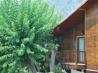 Sunset studio 70 meters from beach - Kemer vacation rentals
