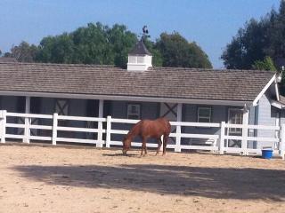 Equestrian community close to Disney - Orange vacation rentals