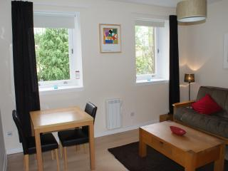Beautiful flat in central Glasgow (lift & parking) - Glasgow vacation rentals