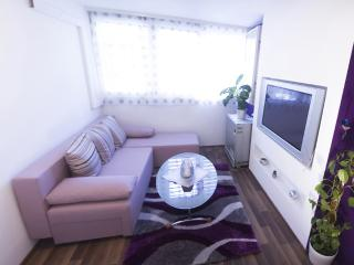 New apartment close to the centre - Split vacation rentals