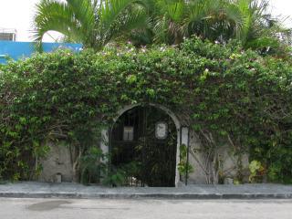 Luxury House on Cozumel - A Hobbit Hole - Cozumel vacation rentals