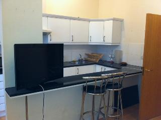 Lovely location 1 Bedroom flat in Bayswater / Queensway - London vacation rentals