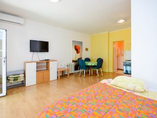 Apartments Ante - 29251-A1 - Tribunj vacation rentals