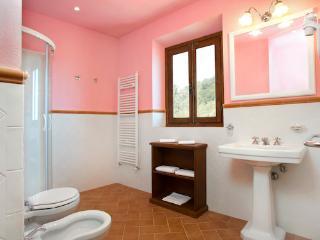 Large Tuscany Farmhouse Near Restaurant - Podere Il Frantoio - Pontassieve vacation rentals