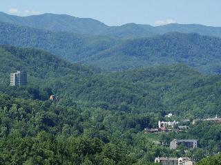 What A View - Gatlinburg vacation rentals