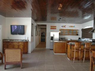 La Buena Vida #8 - Tamarindo vacation rentals