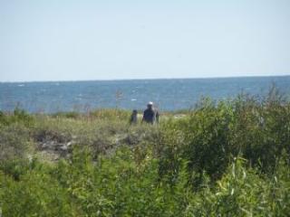Sandy Bottom - Harbor Island vacation rentals