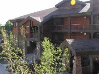 Executive Lakeside 1BR2BA Sleeps 4 - 1BR2BA 5 Star Lakeside Bikepath Jacuzzi FP Garage - Frisco - rentals