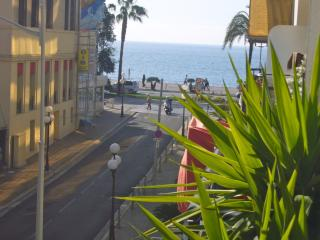 Nice holiday rental apartment in the Cote d'Azur - Nice vacation rentals