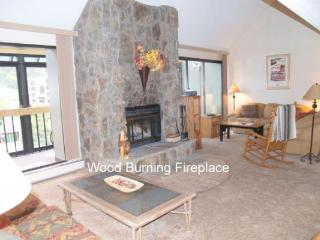 WH307 Wheeler House 3BR 2BA - East Village - Copper Mountain vacation rentals