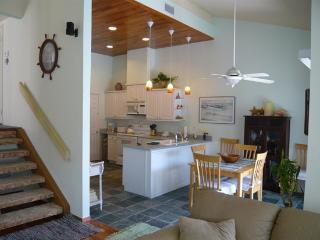 1721 Aldersgate Rd - Encinitas vacation rentals
