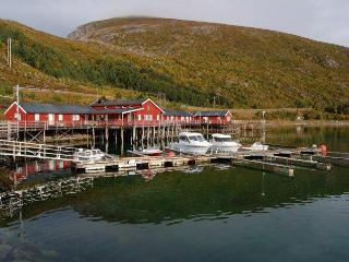 Fisherman Cabin in the heart of Lofoten Islands - North Norway vacation rentals