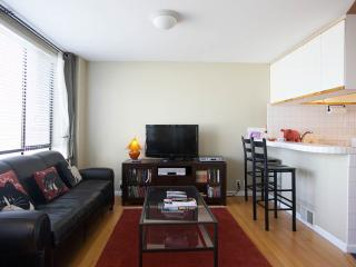 Waterfront Vista - San Francisco vacation rentals