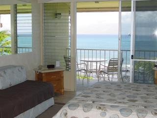 Napili Shores Oceanfront Studio & 1 Bdrm Oceanview - Maui vacation rentals