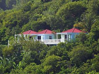Great Turtle Villa - Saint John vacation rentals