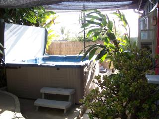 Pet Friendly cottage w/private yard & Jacuzzi/Spa - Encinitas vacation rentals