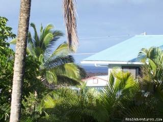 Tropical Retreat Kapoho - Puna District vacation rentals