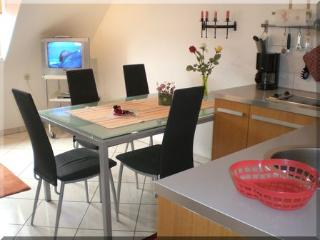 Vacation Apartment in Freiburg im Breisgau - 592 sqft, clean, spacious, affordable (# 290) - Freiburg im Breisgau vacation rentals