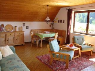 Vacation Apartment in Schluchsee - 753 sqft, comfortable, well-furnished, relaxing (# 512) - Lenzkirch vacation rentals
