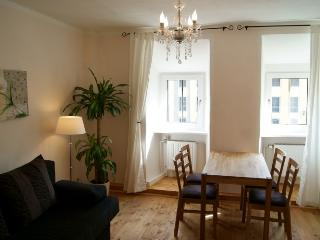 Vacation Apartment in Bamberg - 431 sqft, great atmosphere (# 1541) - Zapfendorf vacation rentals