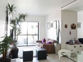 Bright 1 Bedroom Apartment with Pool in Vila Olimpia - State of Sao Paulo vacation rentals