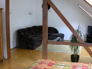 Vacation Apartment in Duisburg - 646 sqft, tastefully furnished, quiet location (# 2232) - Duisburg vacation rentals