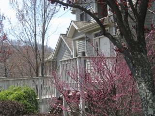 Mountain Air Country Club - Asheville vacation rentals